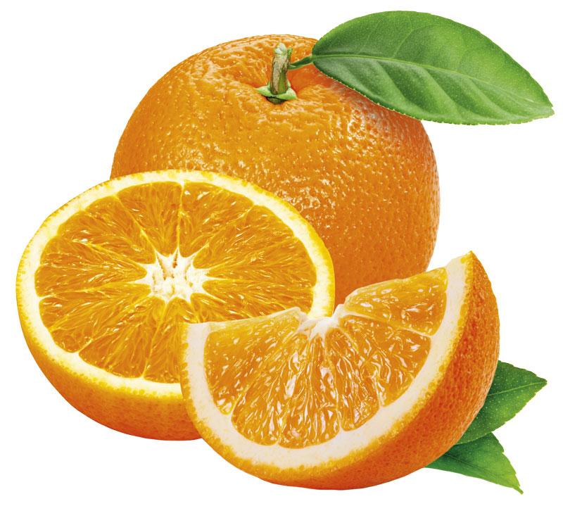Lilla citrusguiden | Allers