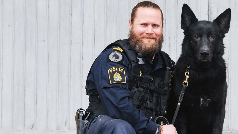 Gatuhund raddades blev polishund