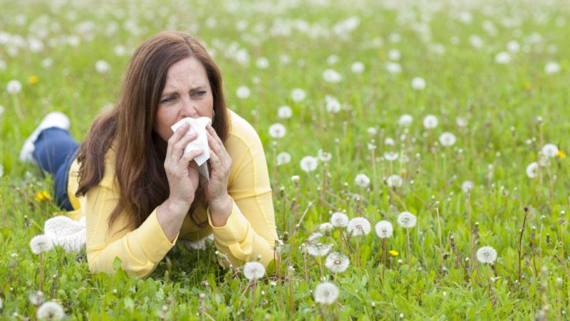 symptom på gräsallergi