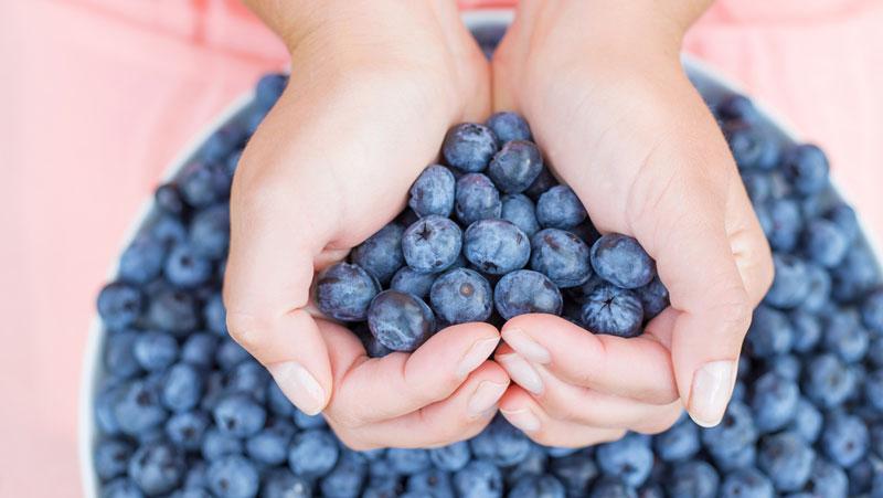 blåbär för magen
