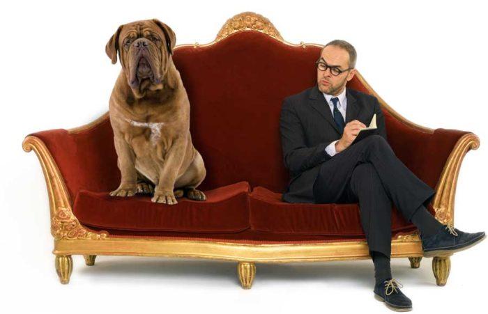 Hundar kan också gå till psykologer. Bild: IBL