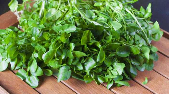 Källfräkne, eller vattenkrasse, passar utmärkt i en hälsosam sallad.