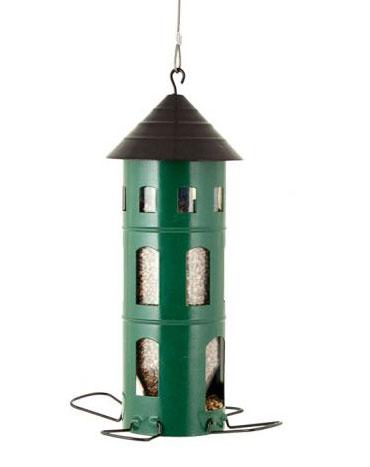 Mata fåglar på sommaren – foderautomat.