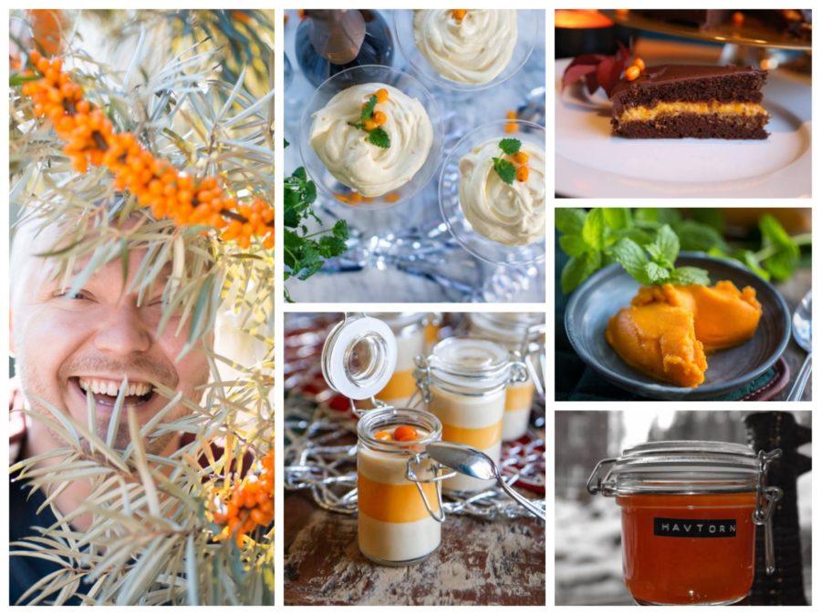 havtorn dessert recept