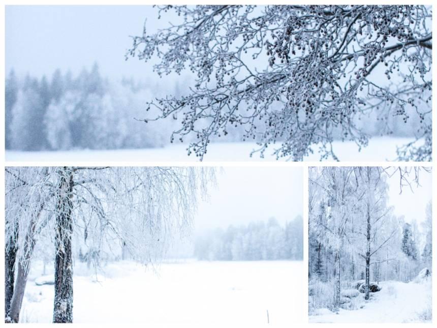 snöbilder