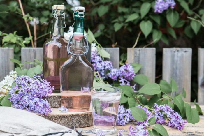 recept på saft med syrenblommor