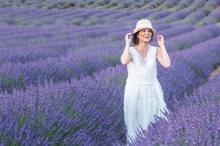 Lavendelfälten i provance